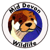 Mid Devon Wildlife
